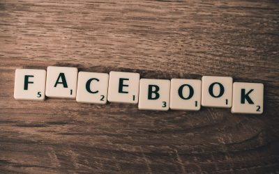 Facebook-Werbung der BAGLS
